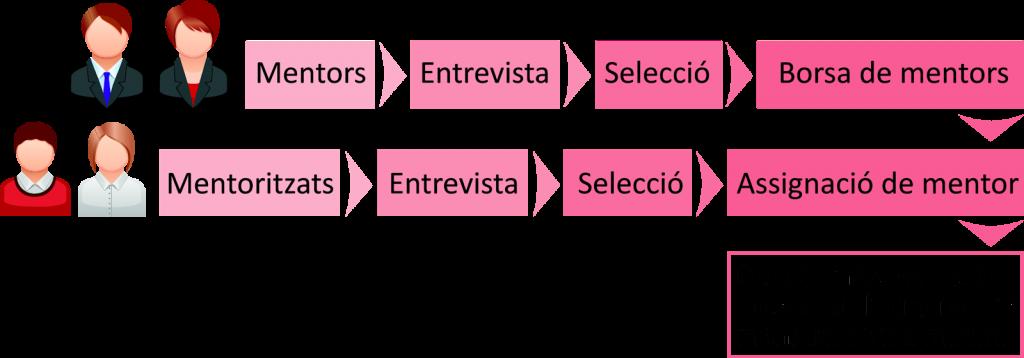 esquema mentores