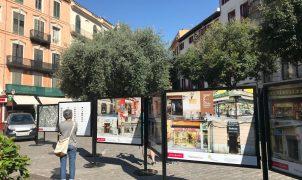 Inauguració de l'exposició fotogràfica del catàleg d'establiments emblemàtics de Palma