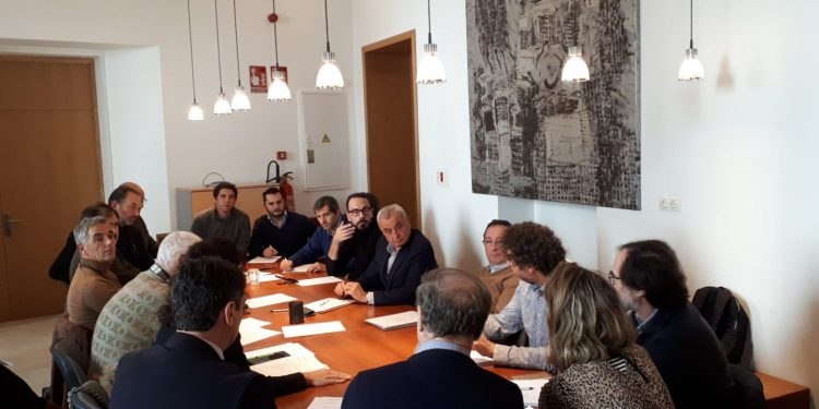 El Consell Municipal del Comerç es reuneix a PalmaActiva