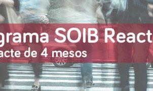 El segon torn de SOIB Reactiva 2020 permetrà la contractació de 177 persones a través de PalmaActiva
