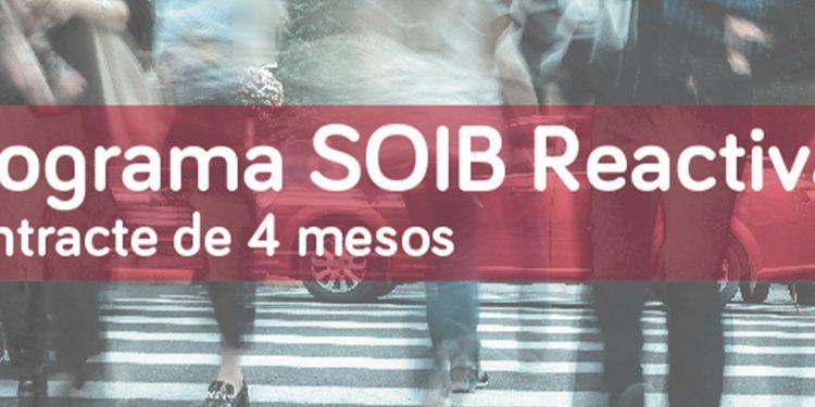 PalmaActiva contractarà 329 persones que treballaran a diferents àrees municipals de l'Ajuntament gràcies al programa SOIB Reactiva 2020