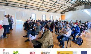 122 persones treballaran a l'Ajuntament de Palma en el segon torn de contractacions del programa SOIB Reactiva 2020