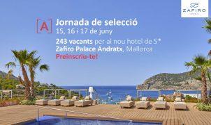 PalmaActiva organitza una jornada de selecció de personal per a Zafiro Hotels per cobrir 243 llocs de feina