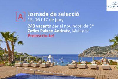 PalmaActiva organiza una jornada de selección de personal para Zafiro Hotels para cubrir 243 puestos de trabajo