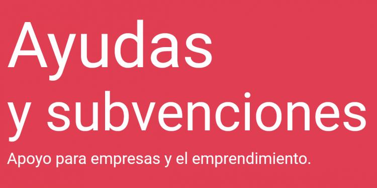 PalmaActiva recoge toda la información sobre subvenciones y ayudas relacionadas con empresas y emprendimiento